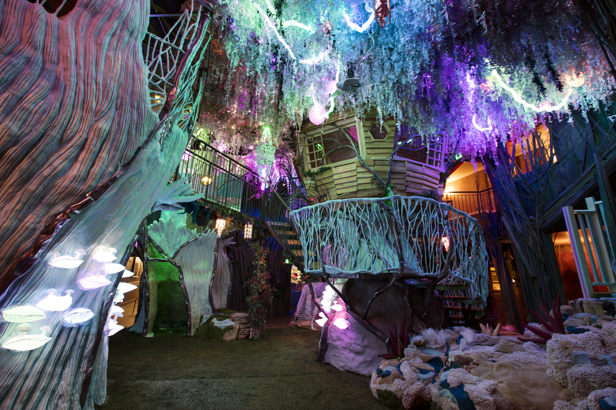 About Meow Wolf House Of Eternal Return
