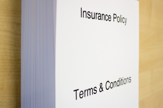 Insurance Policy Terms