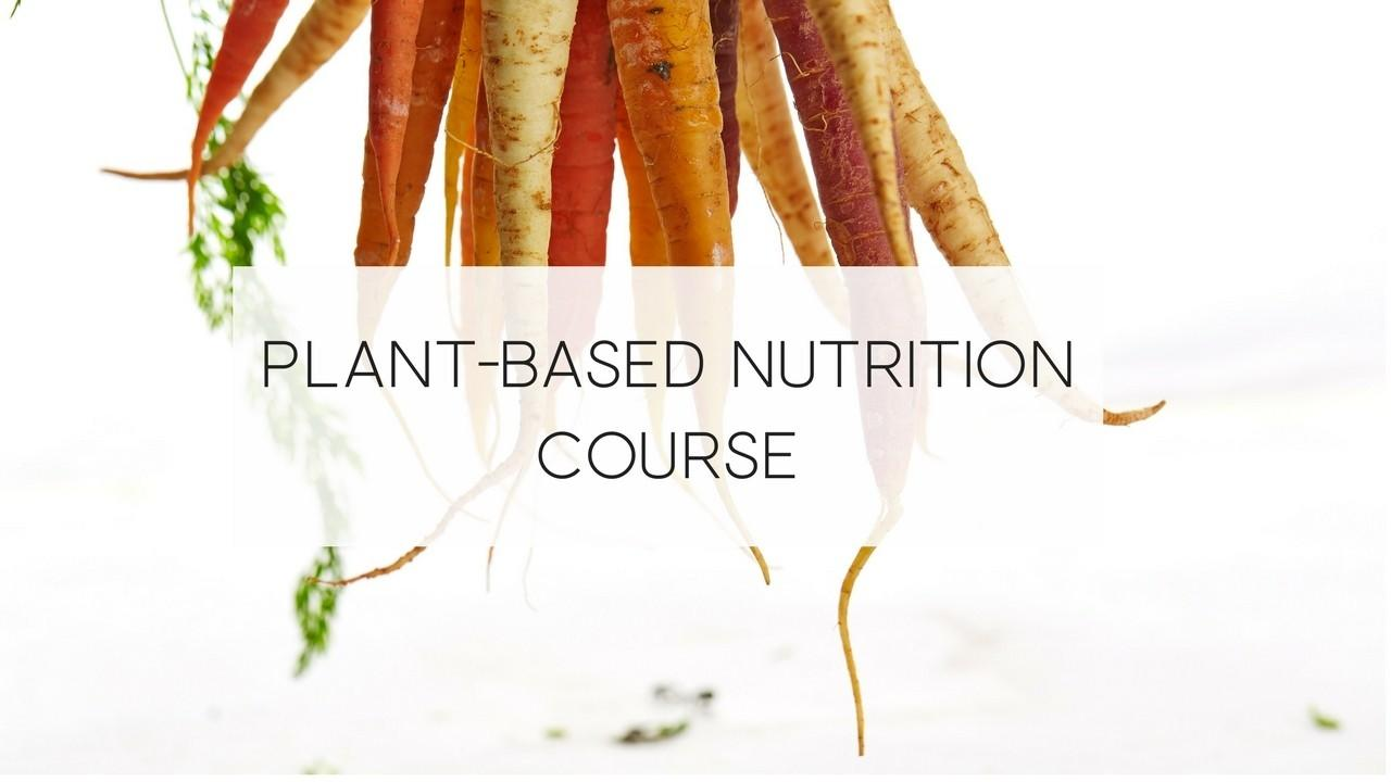 Cover image for a plant-based nutrition course by Vegologie