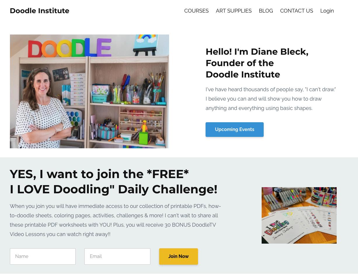 Screenshot of the Doodle Institute website.