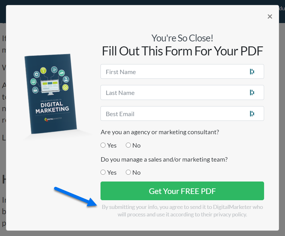 image of a popup with a form to get a free pdf of digital marketing tips