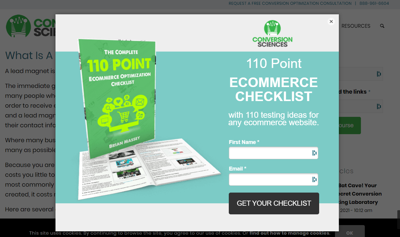 Screenshot of the Conversion Sciences website with a form to download a lead magnet called 110 Point Ecommerce Checklist