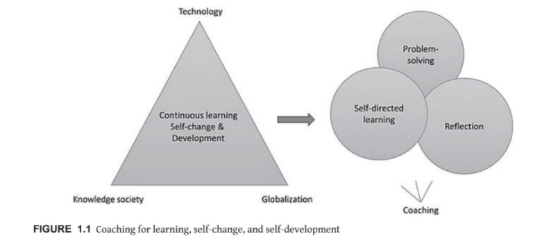 Graph representing how self directed learning, problem solving, and reflection are part of coaching