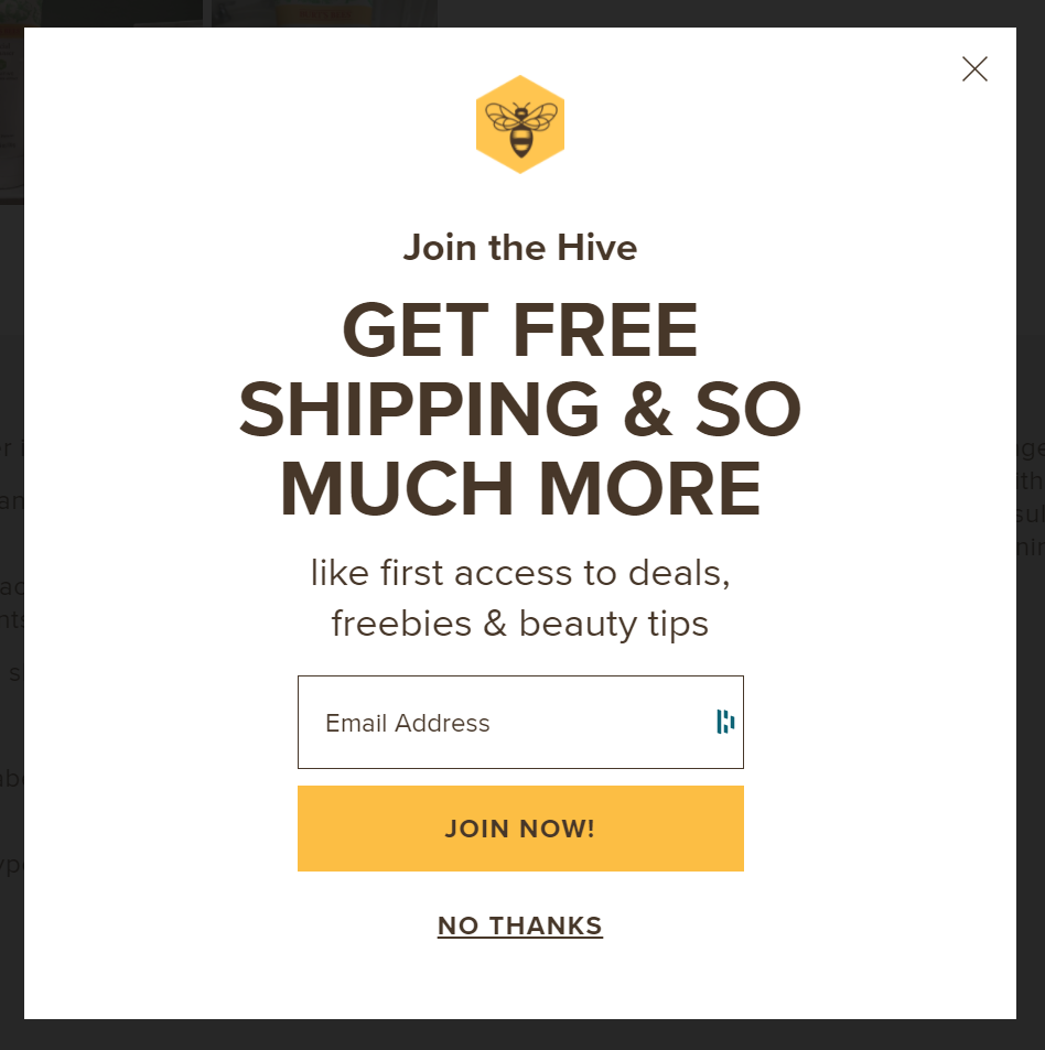 """Screenshot of a Burt's Bees lead generation form saying """"Join the Hive"""""""