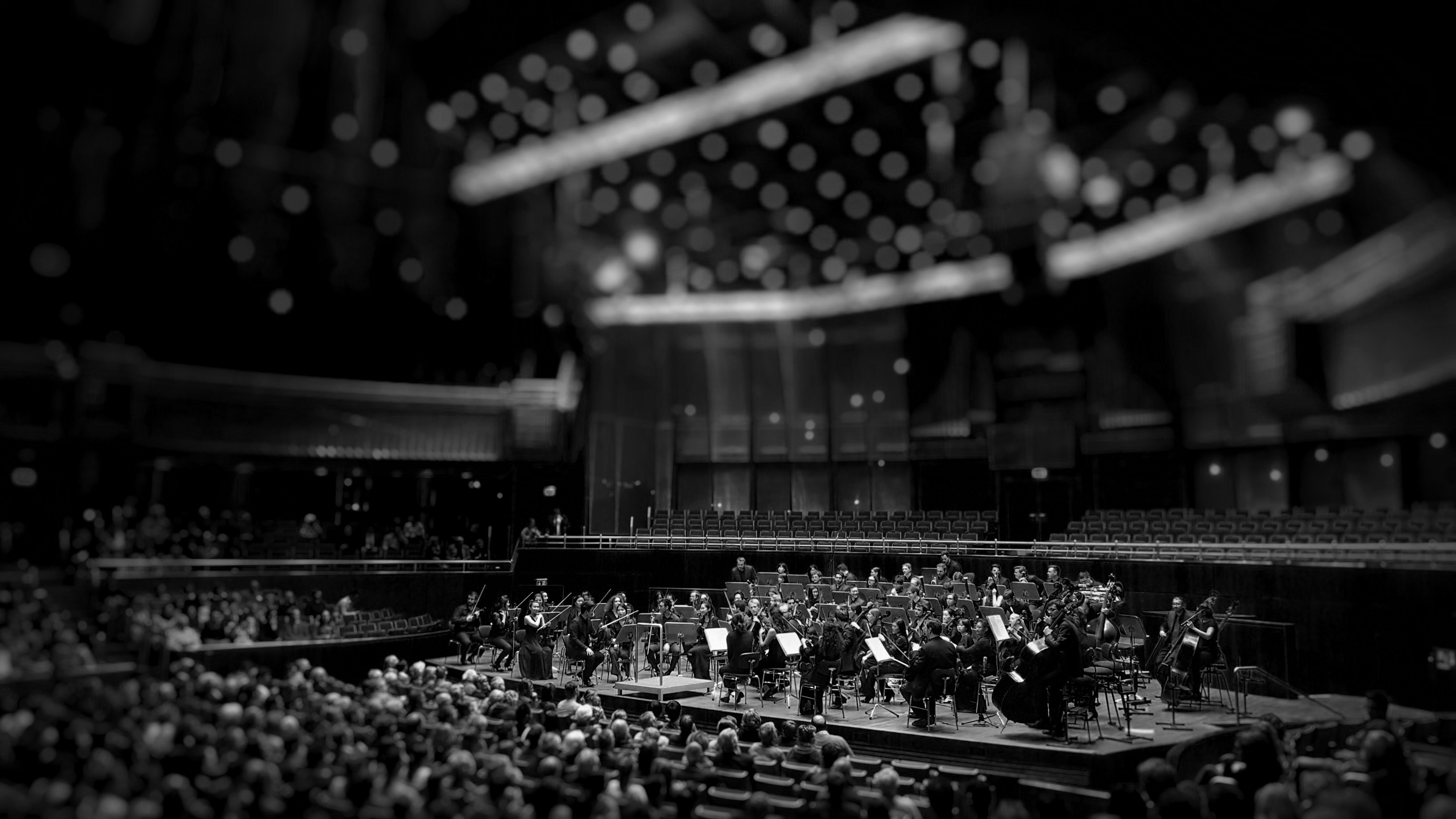 Orchestra playing on stage with blurry background