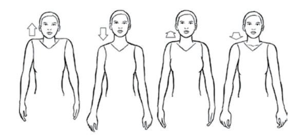 shoulder raises