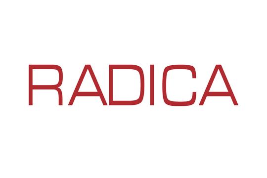 RADICA (HK)