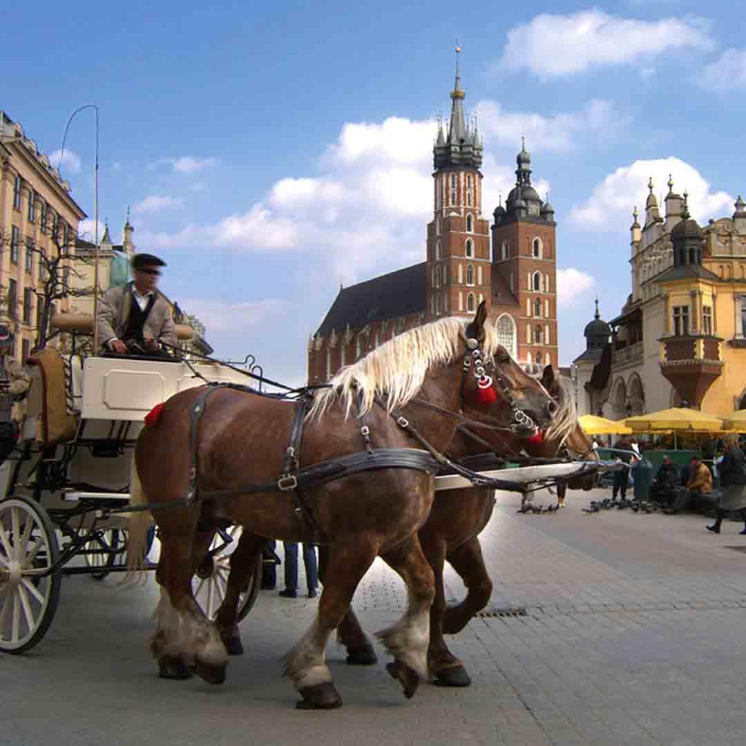 Krakow & Auschwitz School Trips