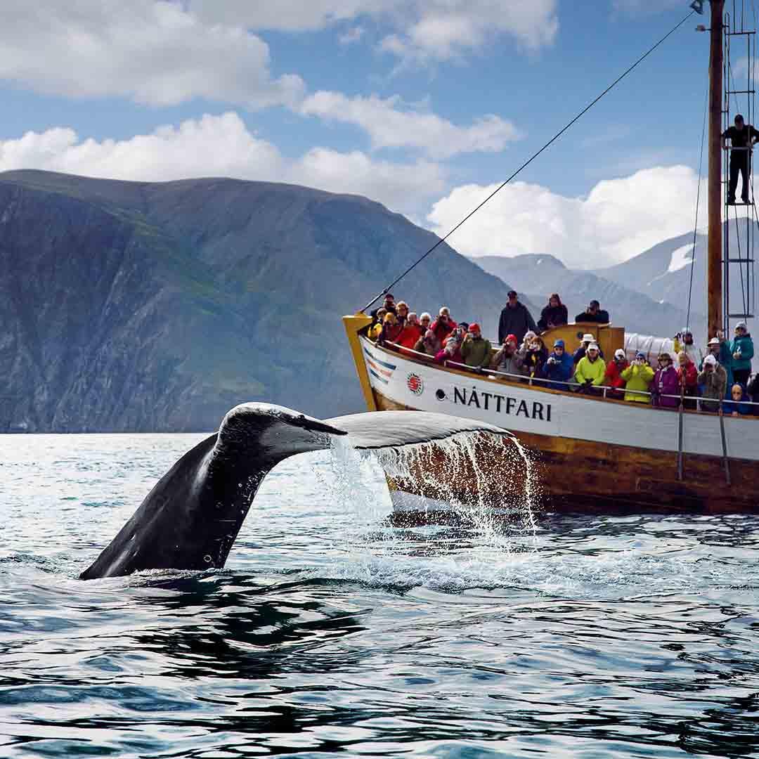 Iceland Geography School Trip