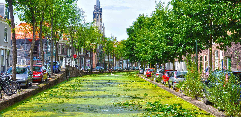 Dutch Coast Primary School Trips