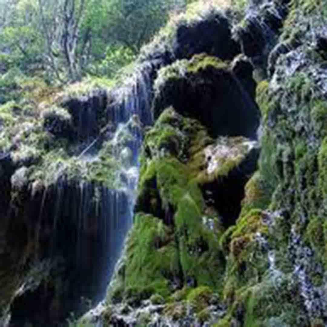 Valle delle Ferriere Nature Reserve