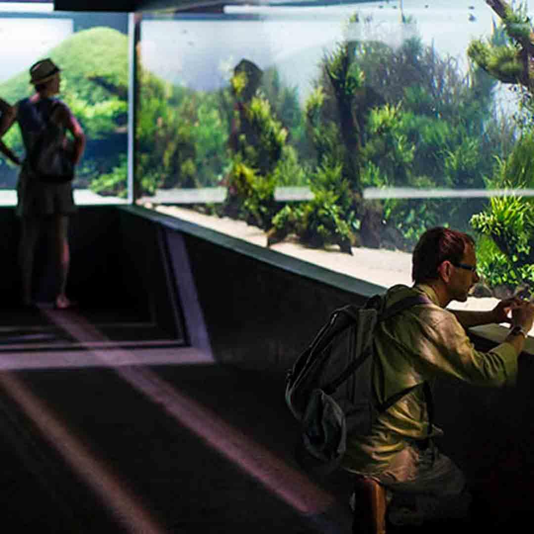 Oceanario Aquarium
