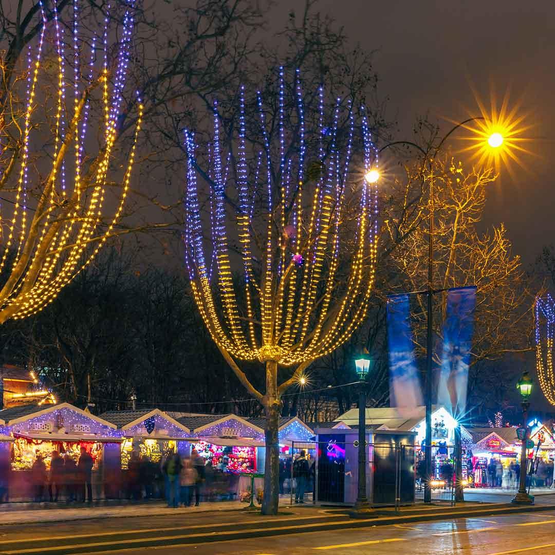 Noisy le Grand Christmas Market (Paris, Ile de France)