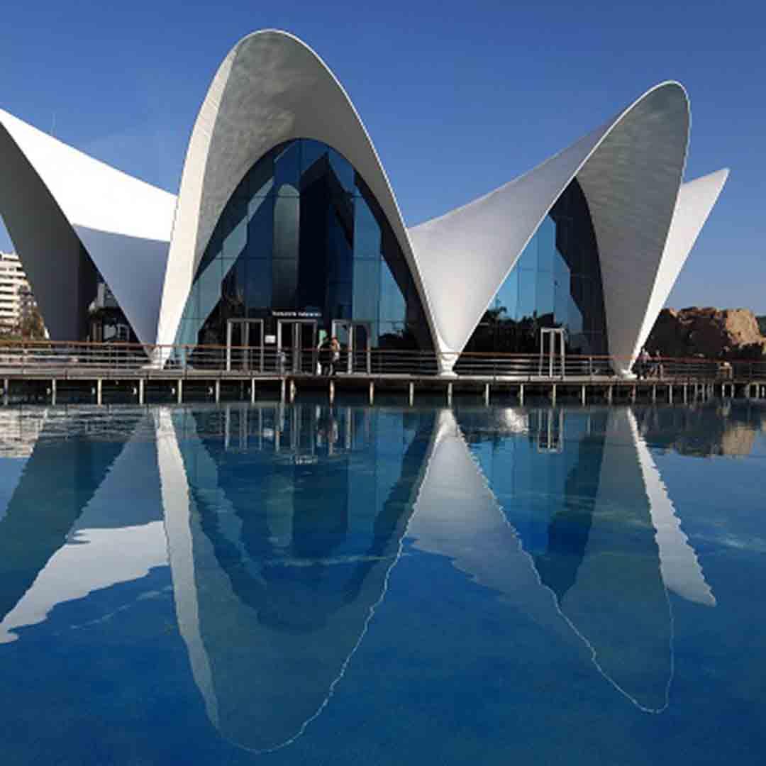 Oceanogràfic - The City of Arts and Sciences