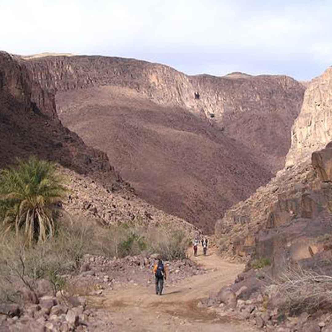 Todra Gorge Daytrip