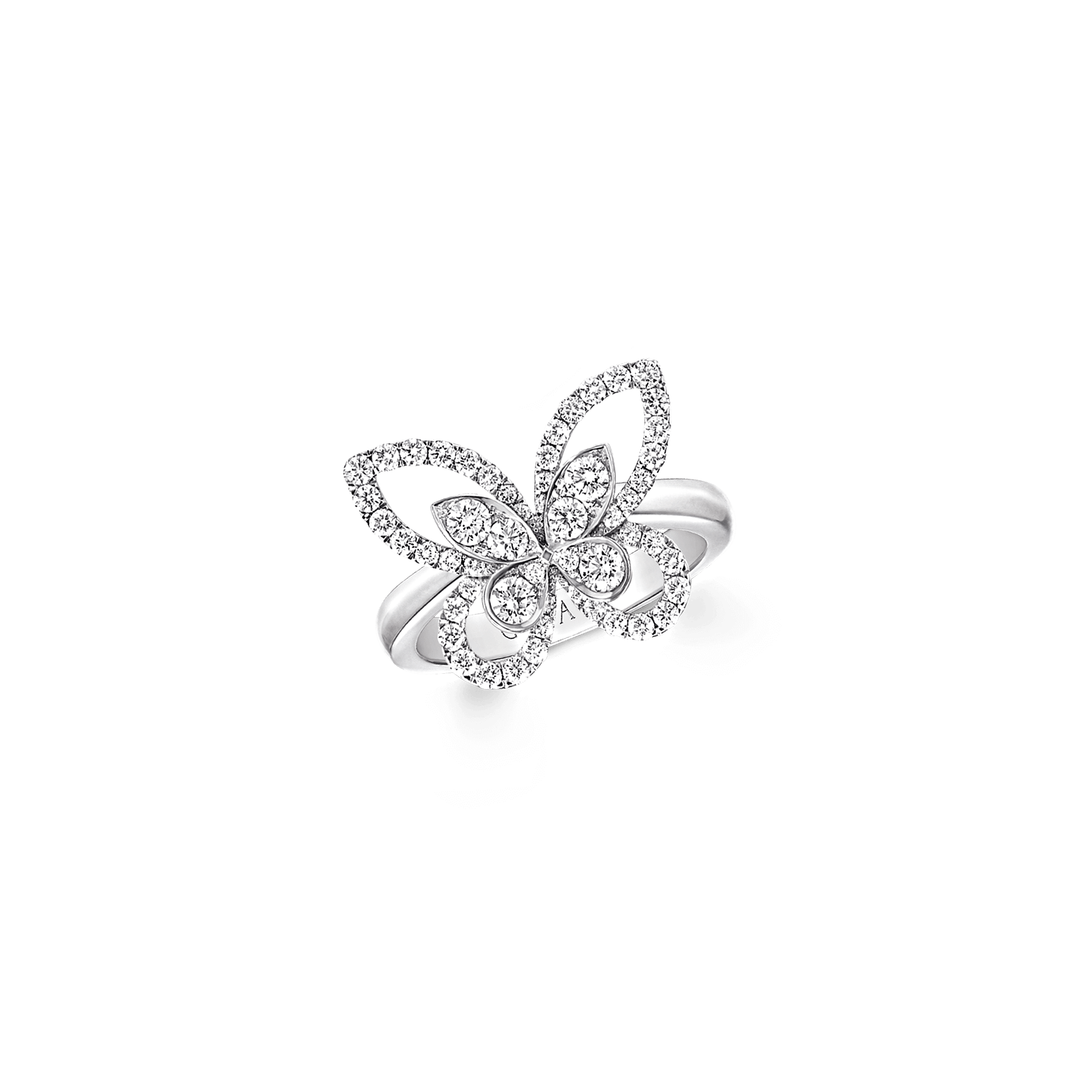 Ring Butterfly Silhouette