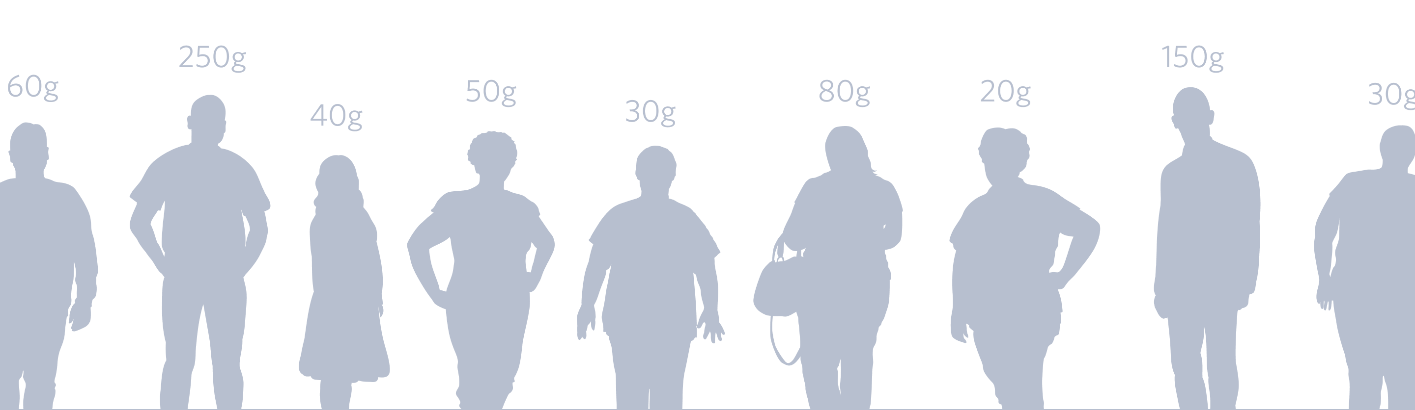 A row of silhouettes of variously shaped people