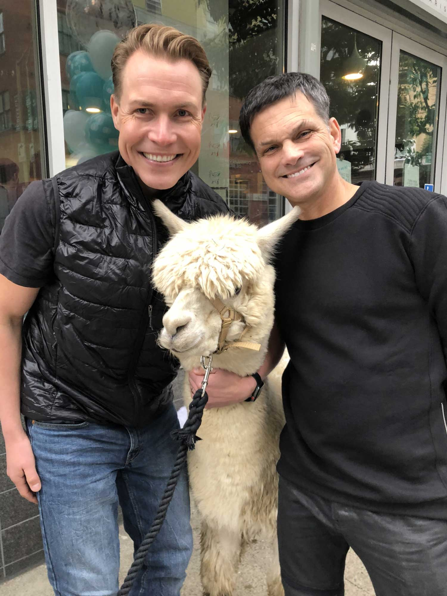 Sami Inkinen (Virta CEO) and David Hatch (Head of UXD) smiling next to an alpaca outside a coffee shop