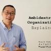 Ambidextrous Organizations Explained