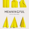Meaningful: The Story of Ideas That Fly Kindle Edition