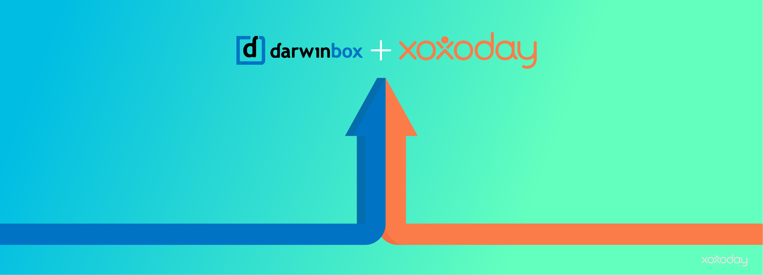 Xoxoday's Plum Integrates with Darwinbox to Create a Reward System for Employees