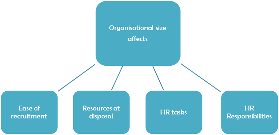 Organisation Size affects