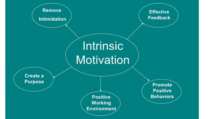 Goals of Intrinsic Motivation
