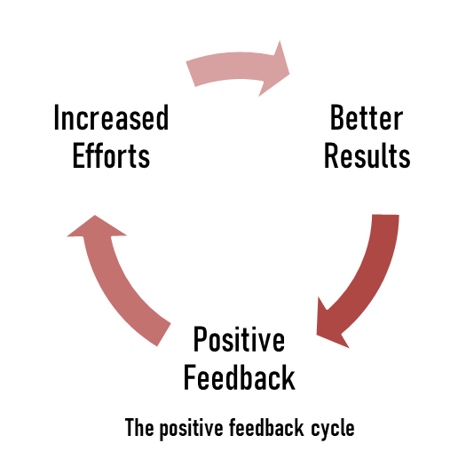 The positive feedback cycle