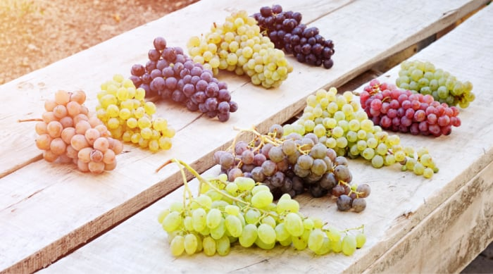 Red Wine vs White Wine: How Are They Made?