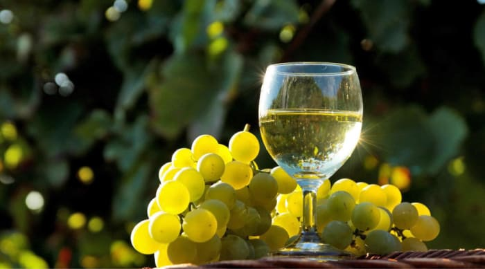 What Is Chardonnay?