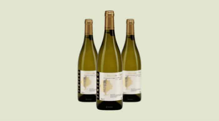 sparkling wine: Elvio Tintero Sori Gramella Moscato d'Asti 2015