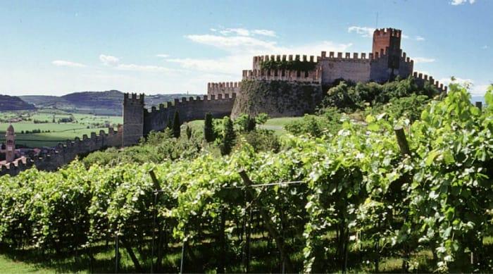 The Valpolicella Wine Region