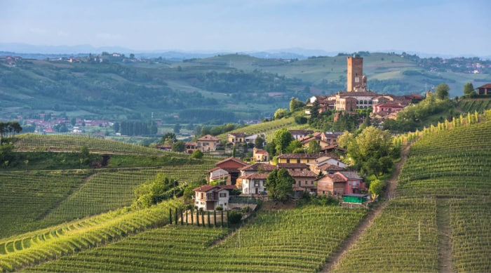 A Brief History of Barbaresco Winemaking