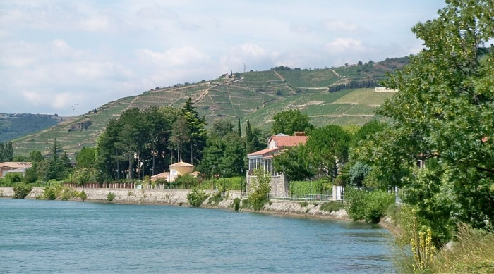 Cotes du Rhone wine: All You Need to Know about Cotes du Rhône