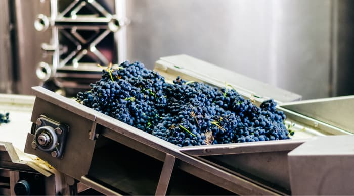 How is a Montrachet wine made?