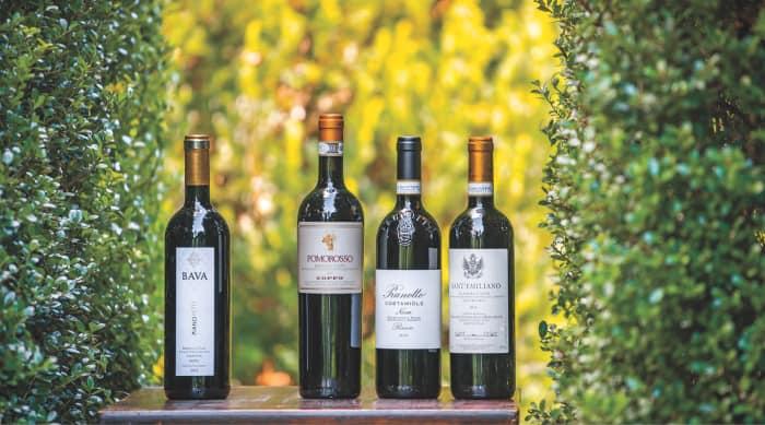 A Brief History of Barbera Wine