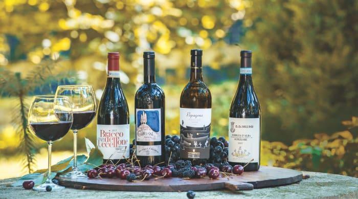 Taste and Characteristics of Barbera d'Asti Wine