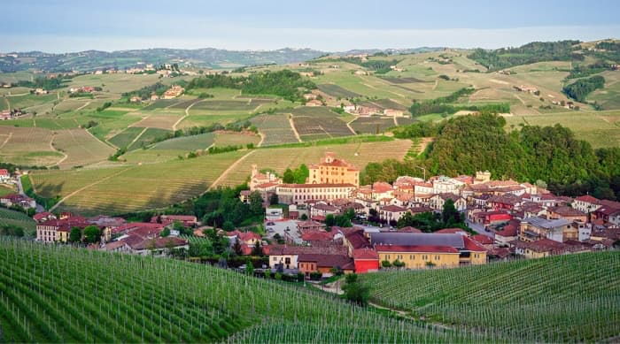 All About Barolo Wine