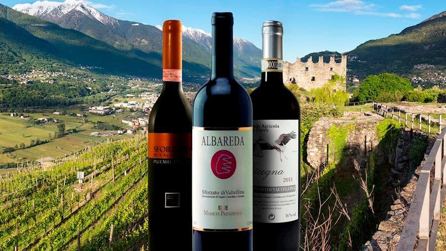 Lombardy Wine