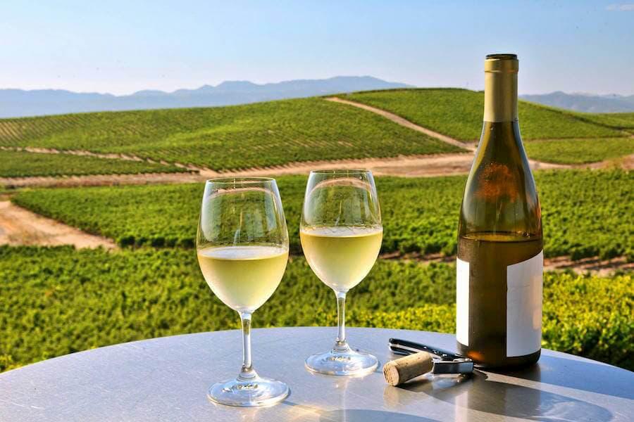 Italian Moscato White wine
