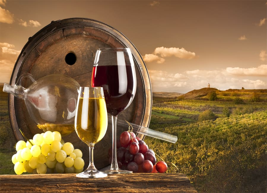 A Rich Winemaking History