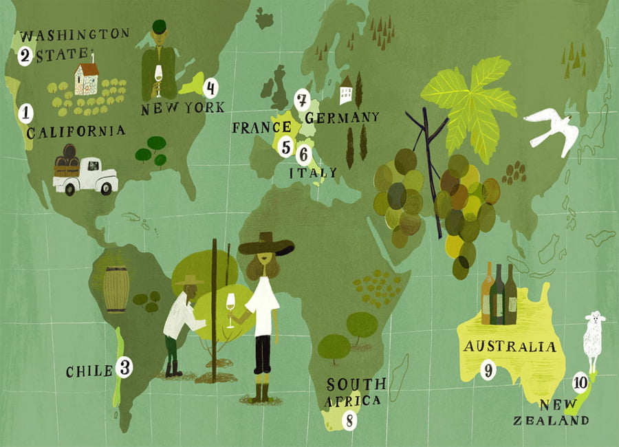 Most popular Sauvignon Blanc regions