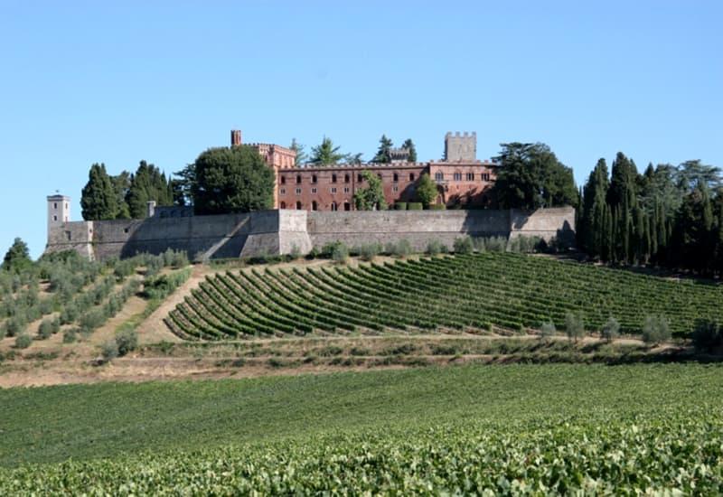 Oldest Winery in Bordeaux