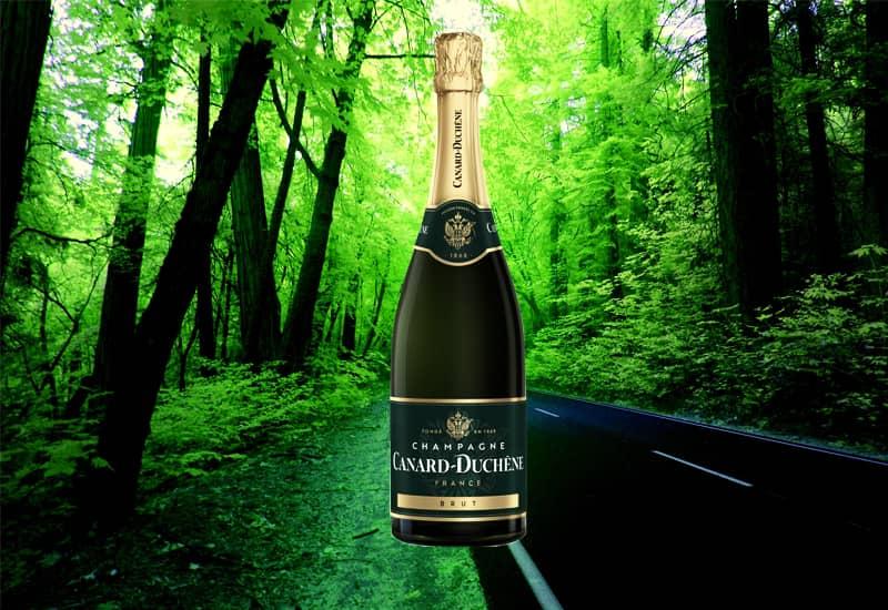 Canard-Duchene Brut, Champagne, France