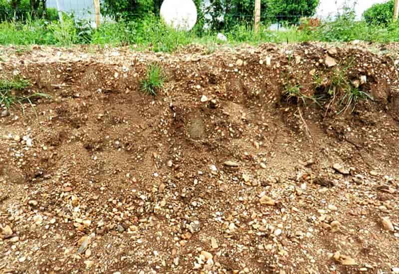 Pomerol Soil