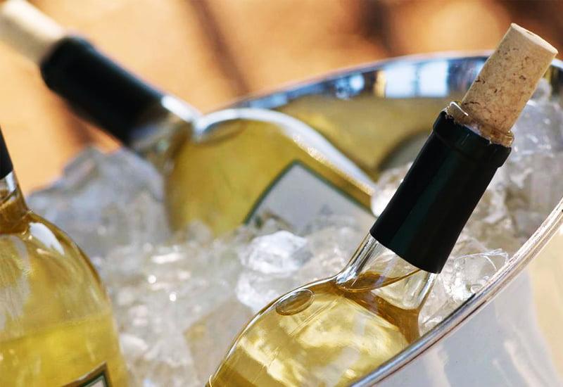 Pinot Blanc Temperature