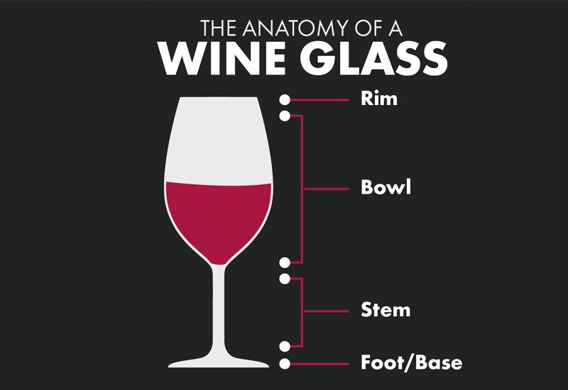 Anatomy of Champagne Glasses