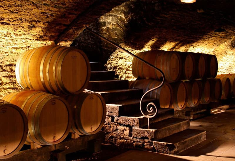 A Brief Intro to Burgundy Wine