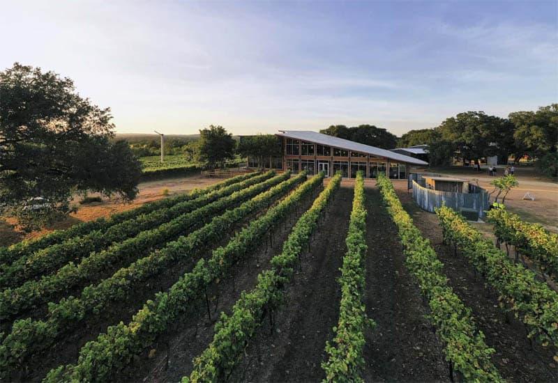 The Burgundy Wine Region: Terroir, Wine Styles, and Flavor Profiles