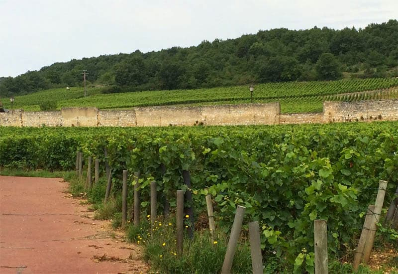 Village wines